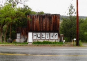 The Essential Importance of Poetry Now